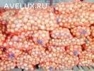 овощи оптом объемы неограниченные опт от 20 тонн