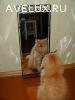 Продаю зеркало в кованом обрамлении, новое. СССР.