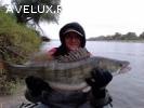Рыбалка, охота, отдых в Астрахани