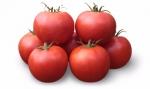 Семена томата KS 835 F1 фирмы Китано