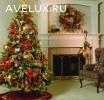 Живые новогодние елки с доставкой до вашей квартиры